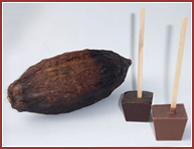Bio-Trinkschokolade